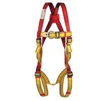 Fall Protection Pioneer DS full body harness
